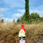 Little dwarf (Nain de Jardin) lost somewhere in Provence by Sokleine - Bédoin 84410 Vaucluse Provence France
