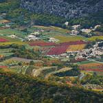 Vignoble en Automne par Toño del Barrio - Bédoin 84410 Vaucluse Provence France