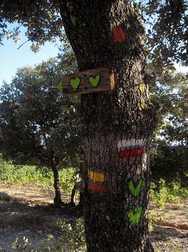 Hiking 2 Heart trail around Bédoin par Sokleine