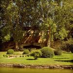 Vignoble - Château La Canorgue par YourDarlinClementine - Bonnieux 84480 Vaucluse Provence France