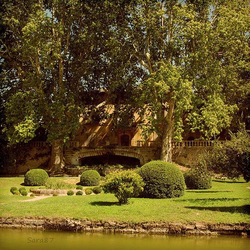 Vignoble - Château La Canorgue by YourDarlinClementine