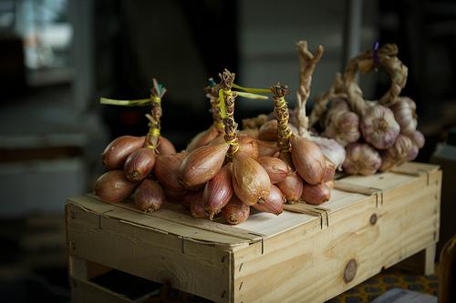 Bonnieux Market : oignon et échalotte par Ann McLeod Images