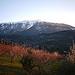 Le Mont-Ventoux enneigé par france pierre26 - Brantes 84390 Vaucluse Provence France