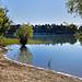 Dans l'eau - Etang de la Bonde by  - Cabrieres d'Aigues 84240 Vaucluse Provence France