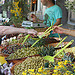 Dégustation d'olives par gab113 - Caromb 84330 Vaucluse Provence France