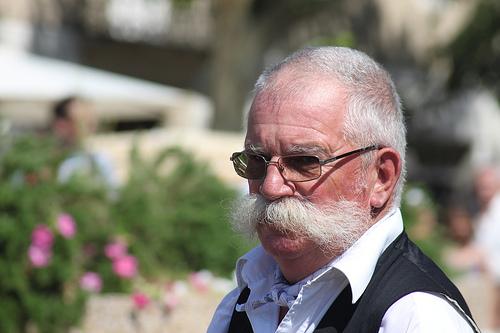 Moustaches - Caromb par gab113