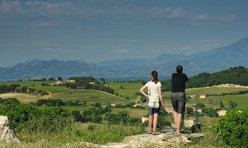 Chateauneuf du Pape : vue sur les vignes par jmt-29