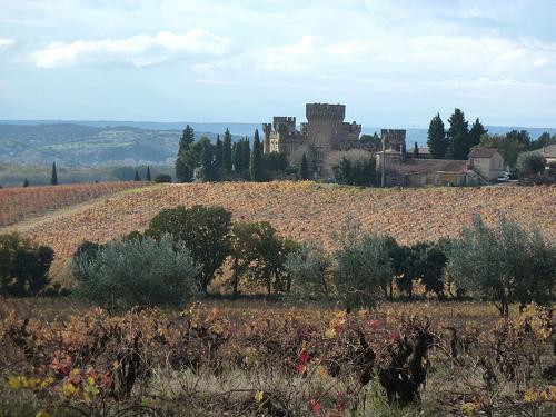 Vignes de Châteauneuf du Pape by Toño del Barrio