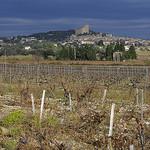 Chateauneuf du Pape - vue sur la ville et les vignes by phildesorg - Châteauneuf-du-Pape 84230 Vaucluse Provence France