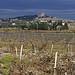 Chateauneuf du Pape - vue sur la ville et les vignes par phildesorg - Châteauneuf-du-Pape 84230 Vaucluse Provence France