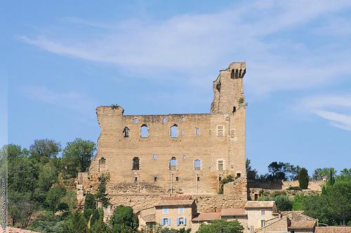 L'ancien château des princes d'Orange par Dominique Pipet