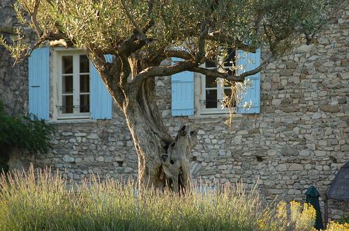Lumière de Provence par MichaelFFM