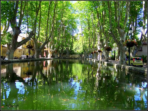 L'étang de Cucuron bordé de platanes par CHRIS230***