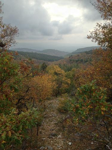 Vue depuis le Mont-ventoux en automne par gab113