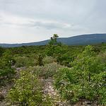 Mont-ventoux par  - Flassan 84410 Vaucluse Provence France