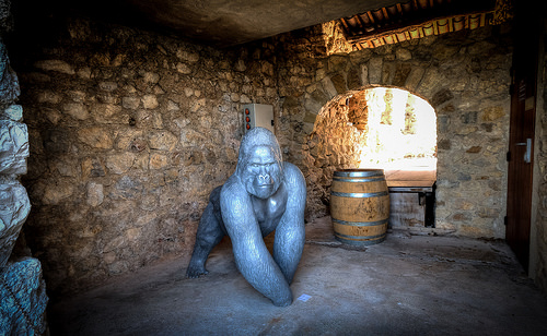 Surprise lors d'une visite de cave by deltaremi30