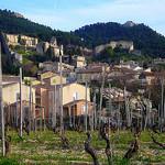Vigne au pied de Gigondas par fgenoher - Gigondas 84190 Vaucluse Provence France