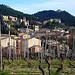 Vigne au pied de Gigondas by fgenoher - Gigondas 84190 Vaucluse Provence France