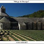 Le calme et sérénité de l'Abbaye de Sénanque by michel.seguret - Gordes 84220 Vaucluse Provence France