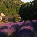 Les charmes du Lubéron... par D. [SansPretentionAucune] (•̪●)  ✪ - Gordes 84220 Vaucluse Provence France