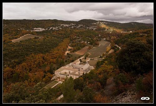 Abbaye de Senanque vue de haut par Coco chat n'elle
