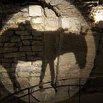 Ane dans les caves du palais Saint Firmin par dgidgil - Gordes 84220 Vaucluse Provence France