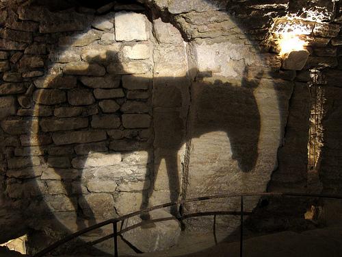 Ane dans les caves du palais Saint Firmin par dgidgil