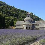 Contrastes de couleurs à l'Abbaye de Sénanque par Massimo Battesini - Gordes 84220 Vaucluse Provence France