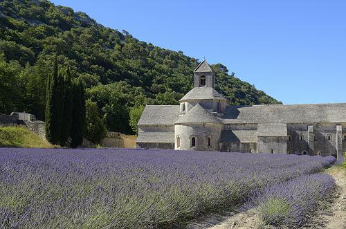 Contrastes de couleurs à l'Abbaye de Sénanque par Massimo Battesini
