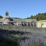 Abbaye de Snanque au fond de son valon by  - Gordes 84220 Vaucluse Provence France