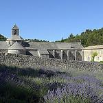 Abbaye de Sénanque au fond de son valon par Massimo Battesini - Gordes 84220 Vaucluse Provence France