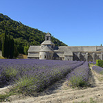 Puret des couleurs - Lavande  l'Abbaye de Snanque - Explore by  - Gordes 84220 Vaucluse Provence France