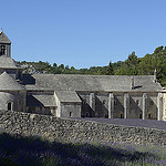 Provence - Lavande  l'Abbaye de Snanque by  - Gordes 84220 Vaucluse Provence France