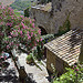 Laurier rose  Gordes par C.R. Courson - Gordes 84220 Vaucluse Provence France