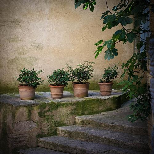 Les pots de terre à Gordes by Ann McLeod Images
