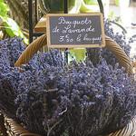 Bouquets de Lavande séchée par  - Gordes 84220 Vaucluse Provence France