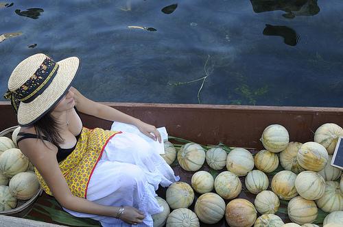 Melons de Provence sur le marché flottant de l'Isle sur la Sorgue by Massimo Battesini