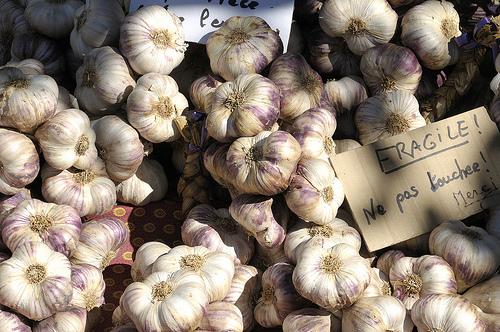 Ail sur le marché de L'Isle-sur-la-Sorgue par Massimo Battesini