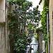 Canal de  l'isle sur la sorgue par Jean NICOLET - L'Isle sur la Sorgue 84800 Vaucluse Provence France