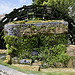 Roue à Aube par Jean NICOLET - L'Isle sur la Sorgue 84800 Vaucluse Provence France