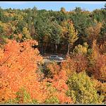 Forêt d'automne en Provence by Photo-Provence-Passion -   Vaucluse Provence France