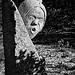 Sculpture abandonnée à Lacoste par Gabi Monnier - Lacoste 84480 Vaucluse Provence France