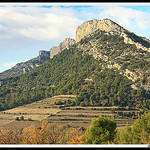 Paysage - Dentelles de Montmirail par  - Lafare 84190 Vaucluse Provence France