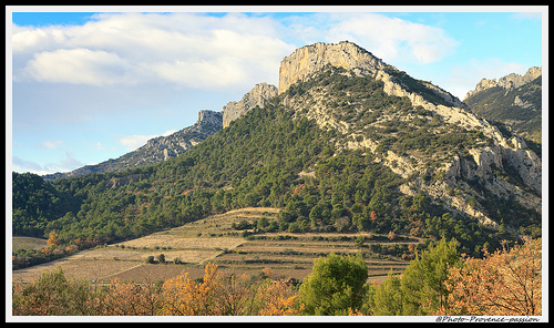 Paysage - Dentelles de Montmirail par Photo-Provence-Passion