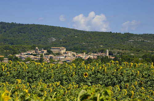 Le village de Lagnes parmi les tournesols by christian.man12