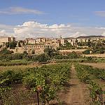 Arrivée à Lauris par Lio_stin - Lauris 84360 Vaucluse Provence France