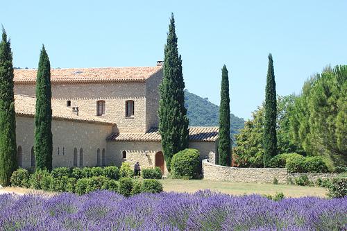 Abbaye Sainte-Madeleine du Barroux by gab113