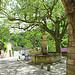 Place du village - Le Baucet par marvgl - Le Beaucet 84210 Vaucluse Provence France