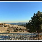 Champs de pierres du Mont-Ventoux by  - Lacoste  Vaucluse Provence France
