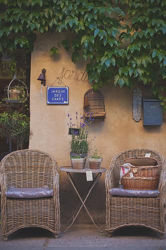 Jardin des chats by Dri.Castro